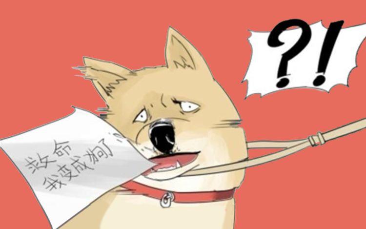 一条狗_全集在线漫画漫画-快看官方漫画的廉政建设图片